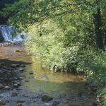Potok Težka voda - Novo mesto