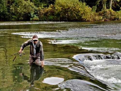 Reka Krka - ribič