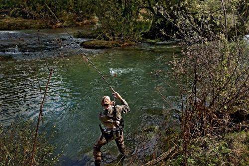 Reka Krka - ribič1