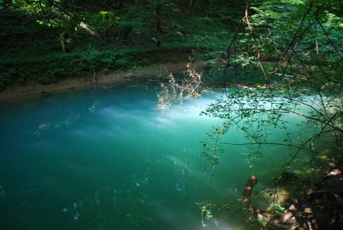 Reka Temenica