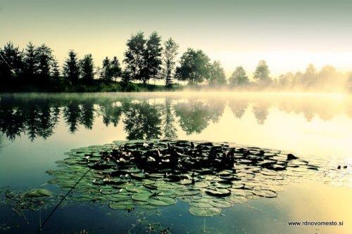 ribnik blato - lov ciprinidov4